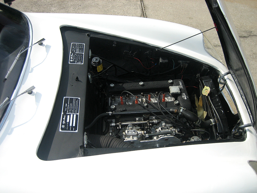 SVZ-engineL